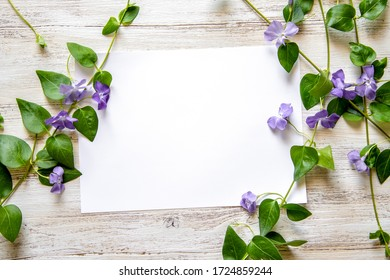 Invitation, postcard, dedication with the possibility of inserting your favorite text. Romantic nature theme, country style with branches and spring flowers and white background.