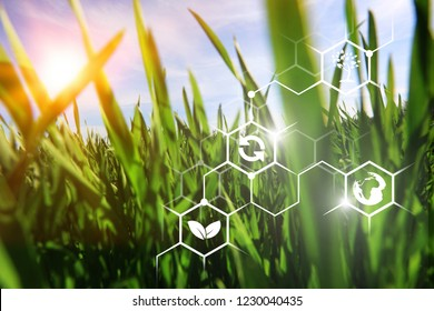 iot, internet of things, agriculture concept, Smart Robotic (artificial intelligence/ ai) use for management , control , monitoring, and detect with the sensor in the farm, field.