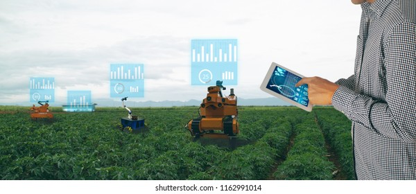 Iot Smart Agriculture Industry 40 Concept Stock Photo (Edit Now