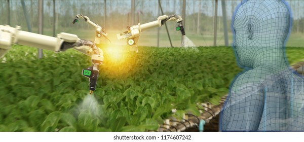 iot smart industry robot 4.0 agriculture concept,industrial agronomist,farmer using software Artificial intelligence technology to monitoring condition and control automatic robotics in farm