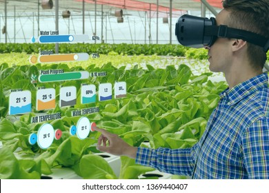 iot smart industry robot 4.0 agriculture concept,agronomist,smart farmer using smart glasses (augmented mixed virtual reality,artificial intelligence technology) to monitoring,control in farm