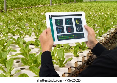 iot smart industry robot 4.0 agriculture concept,industrial agronomist,farmer using tablet to monitor, control the condition in vertical or indoor farm ,the data including Ph, Temp, Ic, humidity, co2