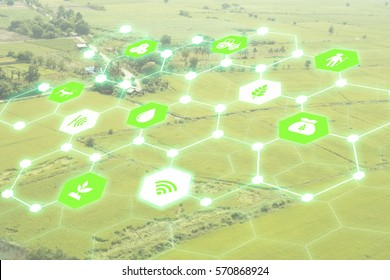 iot,Internet of things(agriculture concept),smart farming,industrial agriculture.Farmer use augmented reality technology to control ,monitor and management in the field