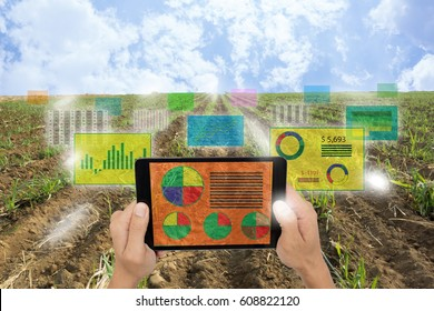 iot,Internet of things(agriculture concept),smart farming,industrial agriculture.Farmer hold a tablet and use augmented reality technology to analysis all data in the field