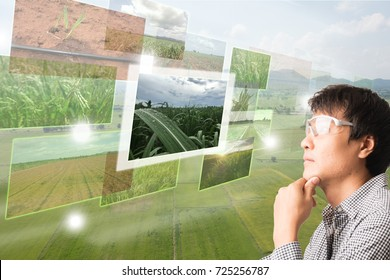 iot,Internet of things(agriculture concept),smart farming,industrial agriculture.Farmer thinking and look up to use augmented reality technology to control ,monitor and management the data in the farm