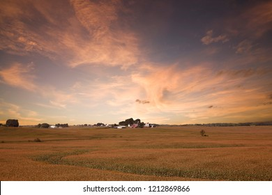 Iowa Corn Field Sunset