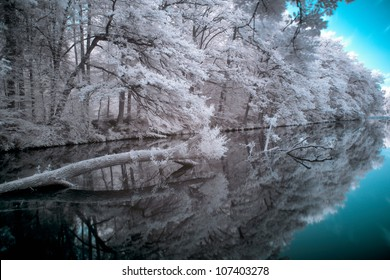 IR photo/Katzebachsee IR/A surreal scene in Infrared, nature mirrored in the water