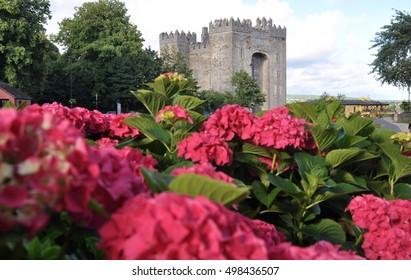 Ireland, Bunratty Castle