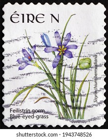 IRELAND - CIRCA 2007: a stamp printed in Ireland shows blue-eyed grass, sisyrinchium bermudiana, is a flowering plant that is indigenous to the Atlantic archipelago and Bermuda, circa 2007
