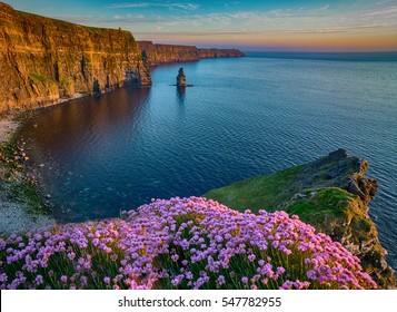 Ireland countryside tourist attraction in County Clare. The Cliffs of Moher and castle Ireland. Epic Irish Landscape UNESCO Global Geopark  along the wild atlantic way. Beautiful scenic nature hdr