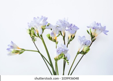 Iris Floral Arrangement