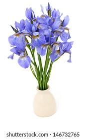 iris flowers in vase over white