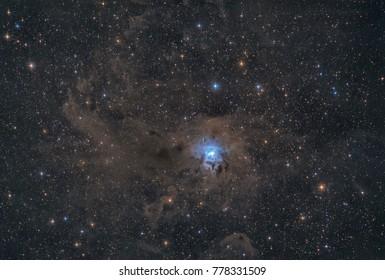 The Iris Nebula NGC 7023 in Cepheus