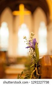 Iris purple on church pew
