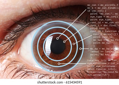 Retinal Scanning Stock Photos, Images & Photography