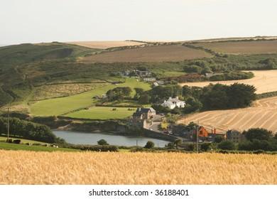 irish countryside in summer