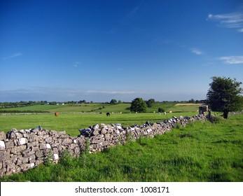 irish summer landscape