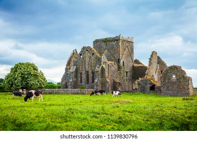 Irish typical landscape and Hore Abbey ruins, Tipperary county, Ireland. Travel photo.