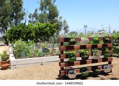 IRIVNE, CALIFORNIA - JULY 11, 2019: Great Park Farm and Food Lab. A one acre plot in Irvine's Great Part established as a demonstration of sustainable urban agriculture offering lectures and workshops