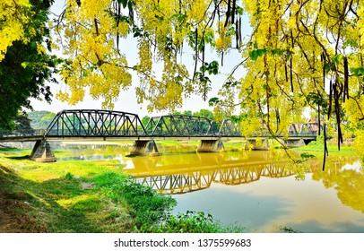 Iron bridge  in Chiangmai Thailand with   Cassia fistula