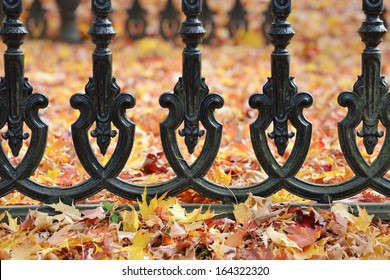 Iron Fence and Autumn Leaves
