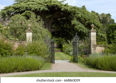 Iron gate open to colourful summer cottage garden with a big tree