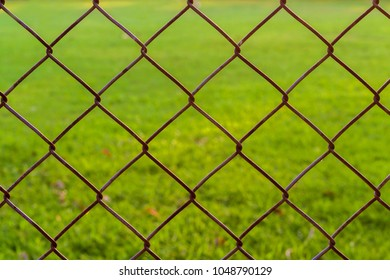 Iron net in Safety zone background. Rusty old wire mesh and blurry green lawn with sunrise or sunset lighting. Image for network connecting or restricted area or safety zone.