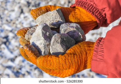 iron ore in the palms