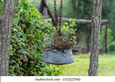 Iron pot suspended with flower and plants inside .