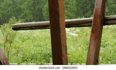Iron and sticks on background of forest. Stock footage. Close-up details of collapsed house on background of forest in rain reminds of tragedy