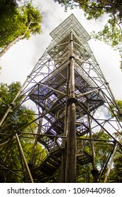 Iron tower in the middle of the forest park of the Amazon, jungle with several trees around, the highest tower in the forest.