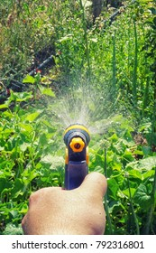 Sprinkler Irrigation Images Stock Photos Amp Vectors