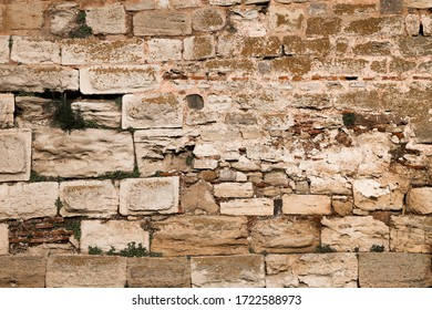 Irregular stone blocks or bricks in a medieval wall of an ancient fortress with missing lime mortar and green weeds growing in the cracks in a full frame texture