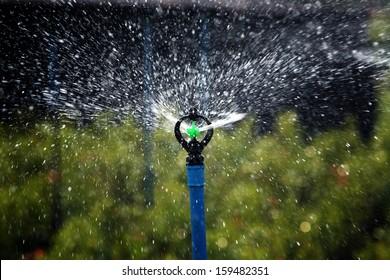 irrigation of agricultural field, water sprinkler