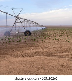 irrigation in agriculture summer