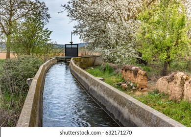 Irrigation canal in plantation