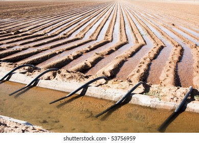 an irrigation canal and siphon tubes used to water a field in Arizona
