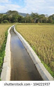 Irrigation canal system in rice fields