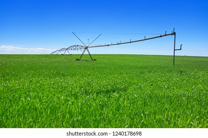 Irrigation at cereal field in Castile La Mancha of spain by Saint James Way of Levante