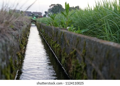 irrigation ditch or irrigation canals in japanese agricultural rice plant farming