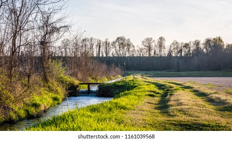 Irrigation ditch in the Ticino river natural park during winter before sunset