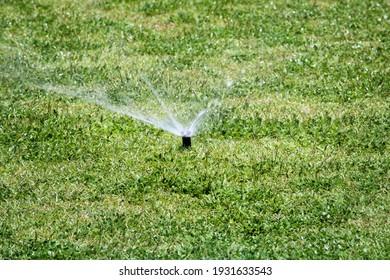 Irrigation equipment watering the grass in a garden