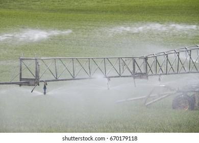 Irrigation of grassland in Lincolnshire, England, UK