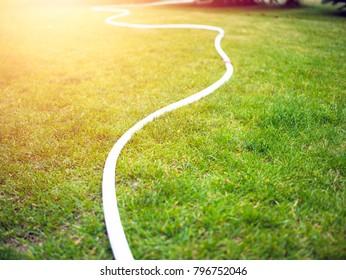 The irrigation hose lies on the grass