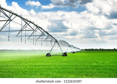 irrigation machine watering agricultural field with young sprouts, green plants on black soil and beautiful sky