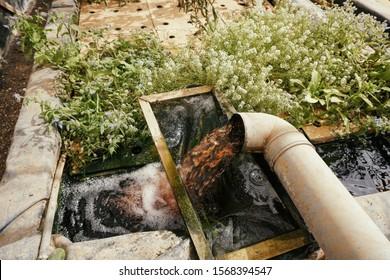 Irrigation pipe in an eco friendly aquaponics farm