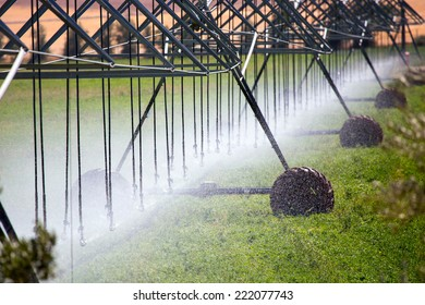 An irrigation pivot watering a field