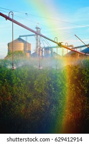 Irrigation spay with rainbow against planted field and grain elevator silo.