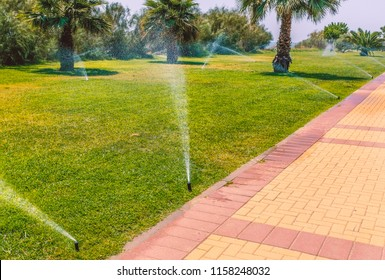 irrigation sprays watering a grass and palm tree public area along a promenade, Isla Canela, Ayamonte, Spain,