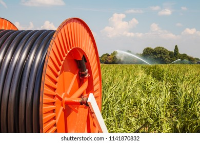 Irrigation sprinkler on farmland during severe drought in The Netherlands
